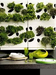 Urban Wall Garden - 203 best vertical images on pinterest vertical gardens