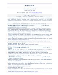 It Resumes Samples Professional Template For Resume Professional It Resume Template