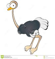 cartoon ostrich stock photography image 14760132