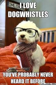 Best Memes Of 2011 - the 40 best memes of 2011 hipster dog memes and meme party