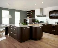 Functional Kitchen Ideas Functional And Stylish Kitchen Cabinets Home Design U0026 Decor Idea