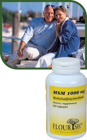 Joint Comfort Dietary Supplement Msm 1000 Mg Maintain Optimal Joint Comfort And Mobility