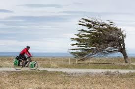 cycling wind how to master cycling in the wind