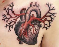 33 best anatomical heart tattoo images on pinterest draw
