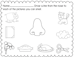 my five senses coloring pages laura williams