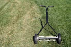 confessions of a reel mower addict treehugger