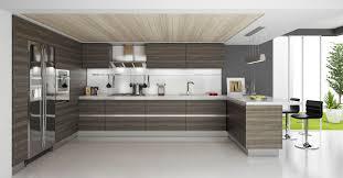 choose modern kitchen cabinets michalski design