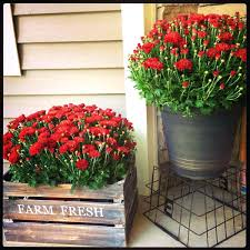 Porch Rail Flower Boxes by Articles With Front Porch Planter Boxes Tag Glamorous Back Porch