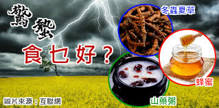 d馗o cuisine industrielle lifewire專欄 主頁