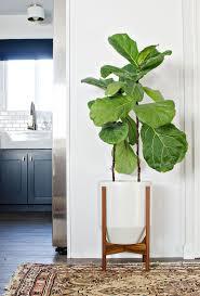 ideas terrific modern indoor plant pots uk fine garden products