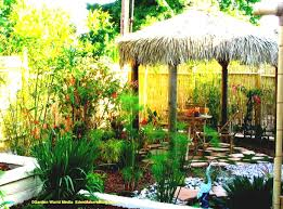 tropical landscape ideas decor u2013 home design and decor