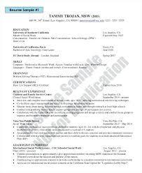 functional resume template 2017 word art functional resume template free download opulent design work