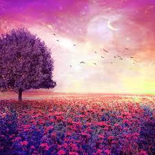fairy dreamy nature flower garden ipad air wallpaper ideas 82