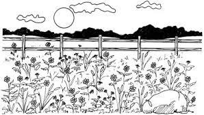 How To Draw Landscapes by How To Draw A Field Of Flowers How To Draw A Field Of Flowers
