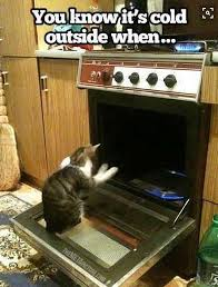 Cold Outside Meme - the 50 funniest winter memes of all time gallery worldwideinterweb