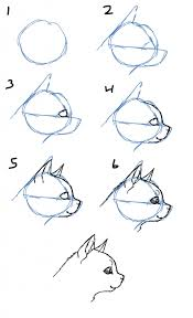 how to draw a cat face pencil art drawing