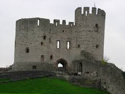 Historical Castles by Reminds Me Of Monty Python The Pup We Would Like To Get