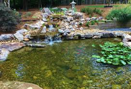 pond and waterfall packages