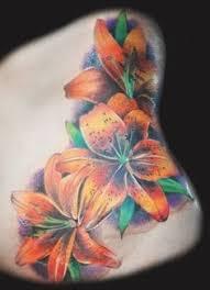 orange tiger tiger lillie flowers proyectos
