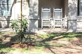 City Backyard Creating An Hoa Approved Backyard Farm In The City
