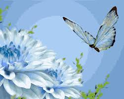 high quality butterfly paintings buy cheap butterfly paintings