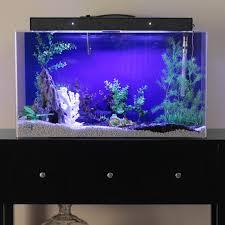 halloween fish tank background tetra glofish aquarium kit 1 5 gal walmart com