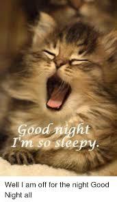 Im Sleepy Meme - i am so sleepy meme mne vse pohuj