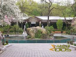 bored at home create your own zoo central park zoo new york city about zoos