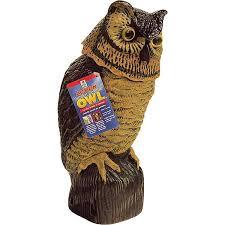 Ducks Unlimited Weathervane Amazon Com Easy Gardener 8011 Garden Defense Wind Action Owl