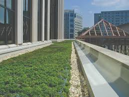 Roof Center Alexandria Virginia by Amazing Green Roof Images