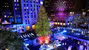 Nyc Tree Lighting Rockefeller Tree To Be Cut Down In Pennsylvania Coming To Nyc