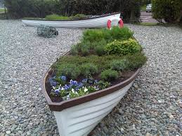 herbs and edible flowers planted in rowing boat slieved donard