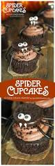 Halloween Fairy Cakes by Best 25 Halloween Cupcakes Easy Ideas Only On Pinterest