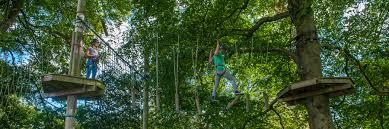 tree tops trail adventuretheme park heatherton family wales