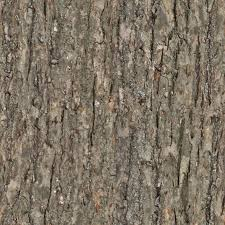 Seamless Wooden Table Texture Wood Tree Bark Seamless Texture Gimp Textures Pinterest