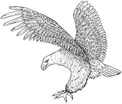 free printable eagle coloring pages kids
