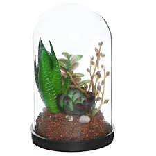 amazon com mygift artificial succulent plants clear glass bell