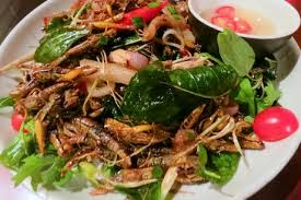 insectes cuisine afrique des insectes bons à manger afrik cuisine com toute