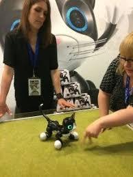 zoomer kitty black friday zoomer kitty review youtube best toys 2015 pinterest kitty