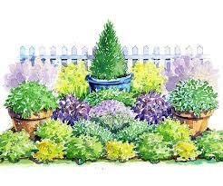 Herb Garden Layouts Herbs