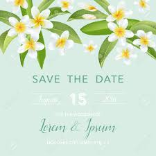 Background Of Invitation Card Wedding Invitation Card With Tropical Flowers Background