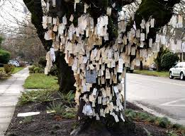 wishing tree wishing tree portland the world s best gardening