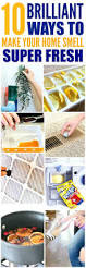 What Is The Best Dishwasher Best 25 Dishwasher Smell Ideas On Pinterest Window Cleaning