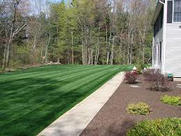 How Much To Landscape A Backyard by Rhode Island Sod And Turf Farm Prices Delivery And Installation
