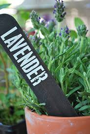Vegetable Garden Labels by 238 Best Diy Gardening Markers Images On Pinterest Plant