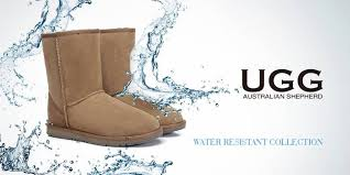 ugg boots sale review ugg express ugg boots home