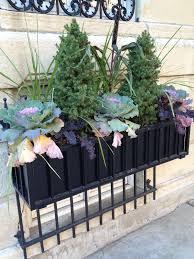 Plants For Winter Window Boxes - 86 best window box ideas images on pinterest windows window