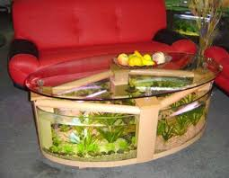 Feng Shui For Room With Aquarium  Interior Decorating Ideas To - Feng shui living room decorating