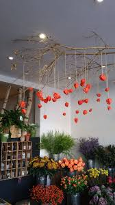 our halloween decorations have gone up hanging physalis decor