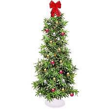 Marijuana Christmas Tree